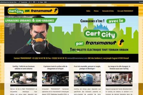 Site web CartCity par TRANSMANUT